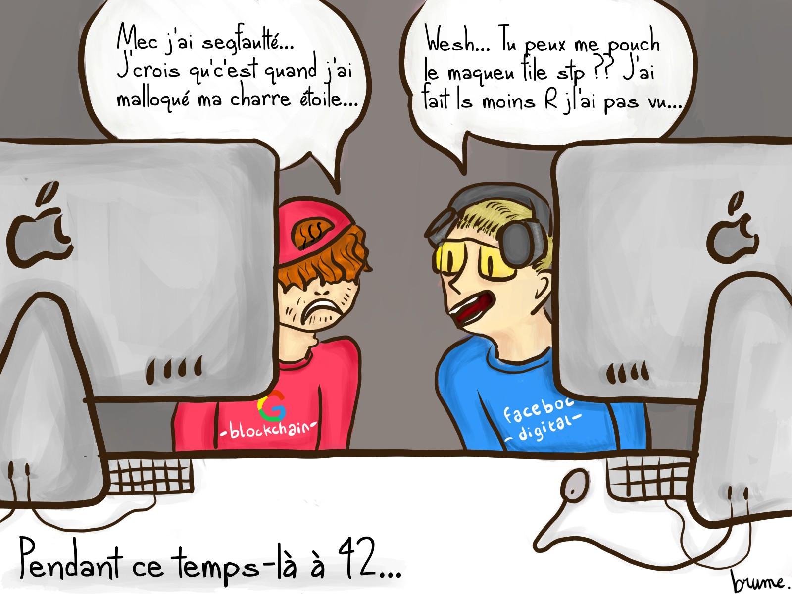 strip 42
